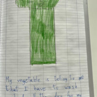 Pietro vegetable with instructions